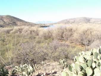 Patagonia SP