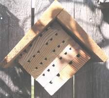 Mason bee house plans